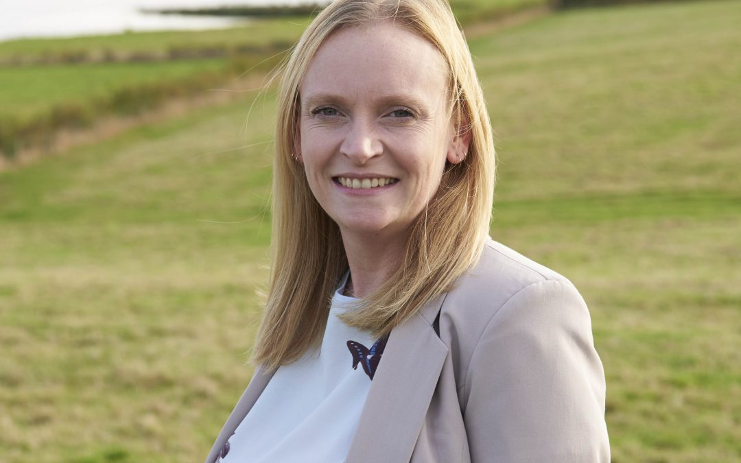 Director of environmental consultancy awarded badger licence