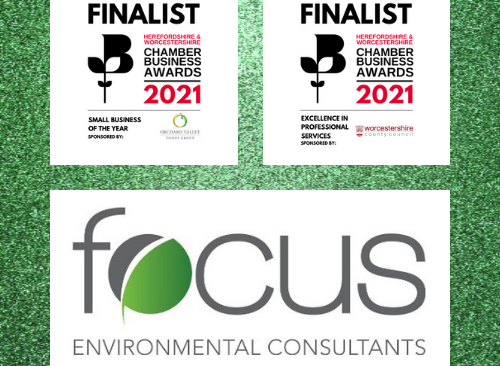Environmental consultancy shortlisted for two business awards