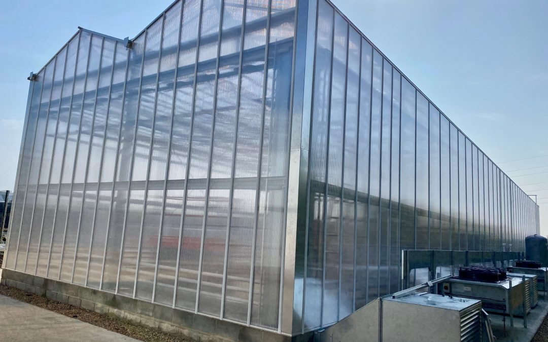 Specialist glasshouse to provide high-speed growing capability for leading crop science research organisation